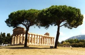 Temple of Athena, Paestum - wikimedia.org